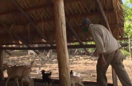 Ciencia e innovación, aliados de los campesinos guantanameros