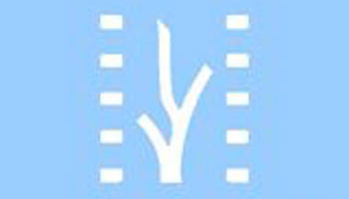 Festival Internacional del Nuevo Cine Latinoamericano proyectará 98 películas