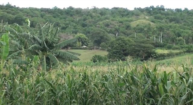 Avalan a la finca La Esperanza en Guantánamo con la condición de agroecológica