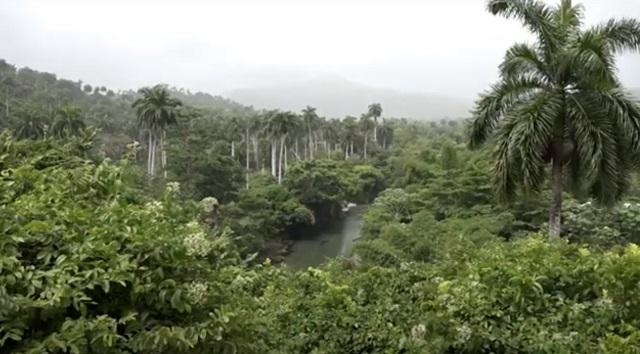 Conectando paisajes para preservar ecosistemas montañosos