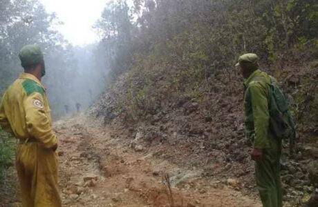 Alertan sobre proliferación de incendios forestales en Cuba