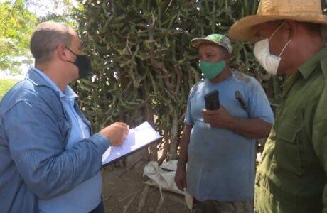 Empresa eléctrica reajusta sus servicios para sector agropecuario