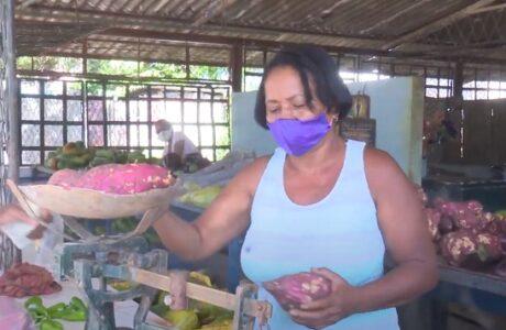 Agricultores guantanameros comprometidos con la producción de alimentos
