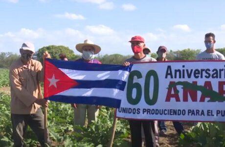 """Campesino de Guantánamo, José Antonio Márquez, """"el Morito"""", recibe reconocimiento de la ANAP"""