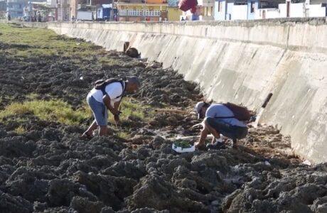 Baracoa: preservación del medio ambiente