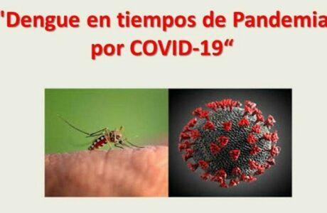 El control de la COVID-19 y el dengue: retos que Guantánamo asume a la par